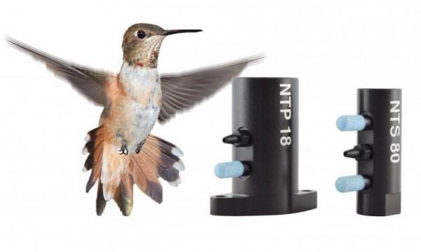 Hummingbird vibrator in use